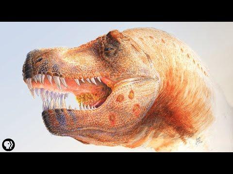 ТОП-10: Замечательные подробности из ежедневной жизни динозавров
