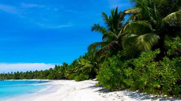 Ученые нашли на почти необитаемых островах 414 млн частиц пластикового мусора. Его вынесло океаническими течениями