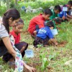 Хочешь получить образование — посади дерево: на Филиппинах приняли закон, направленный на спасение планеты (5 фото)