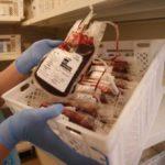 Исследователи смогли создать универсальную донорскую кровь