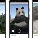Поиск изображений Google теперь может спроецировать животных прямо в комнату пользователя
