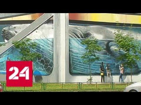 В Одинцове пройдет крупнейший в мире фестиваль граффити - Россия 24