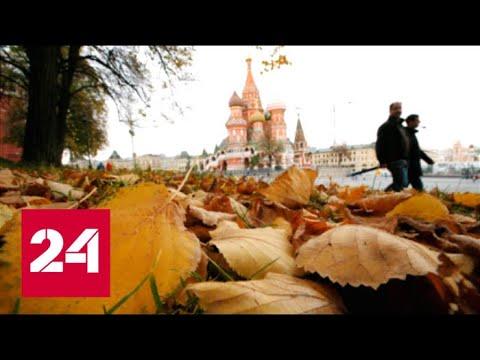 «Погода 24»: после репетиции зимы придет третья волна бабьего лета — Россия 24