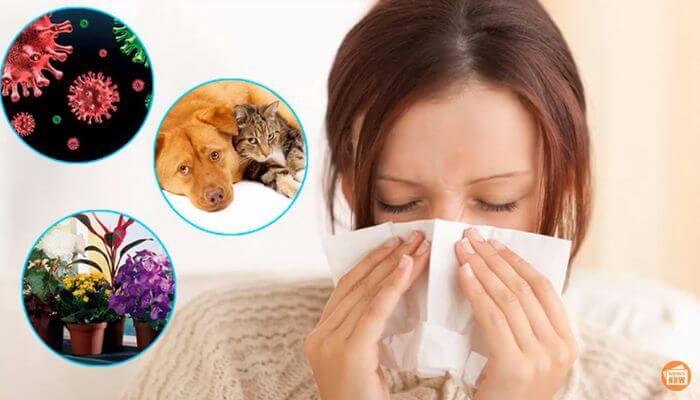 Может ли пыльца переносить коронавирус